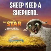 star christmas story movie